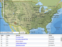 Interactive Endangered Species Map