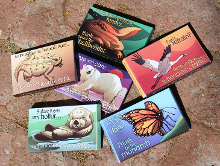 Sign up for Endangered Species Condoms