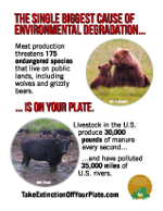 Take Extinction Off Your Plate cards